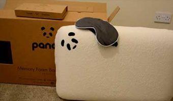 Panda Pillow Plus Eye Mask
