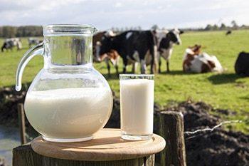 Does Milk Help You Sleep
