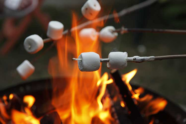 Family toasting marshmallows while camping