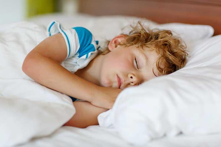 Little Boy Sleeping In Toddler Duvet